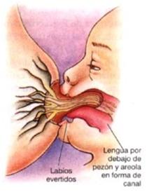 Chupete Dr Marinov etapa 3, látex natural de alta pureza 3